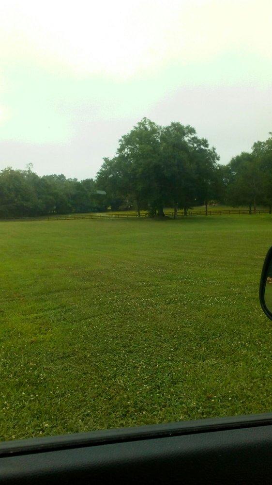 Camp Maranatha: 170 Floyd Rd, Ila, GA