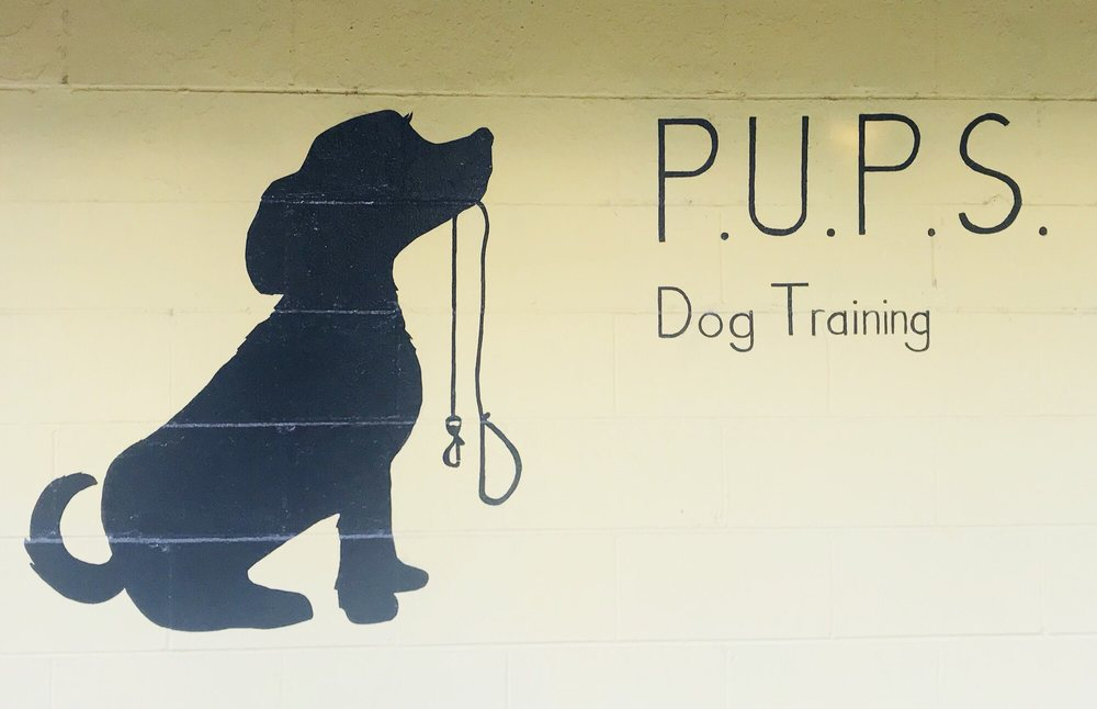 P.U.P.S. Dog Training: 519 NW 10th Ave, Gainesville, FL