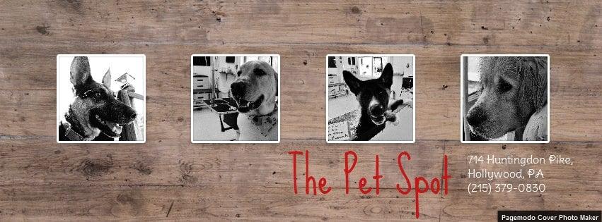 The Pet Spot: 714 Huntingdon Pike, Hollywood, PA