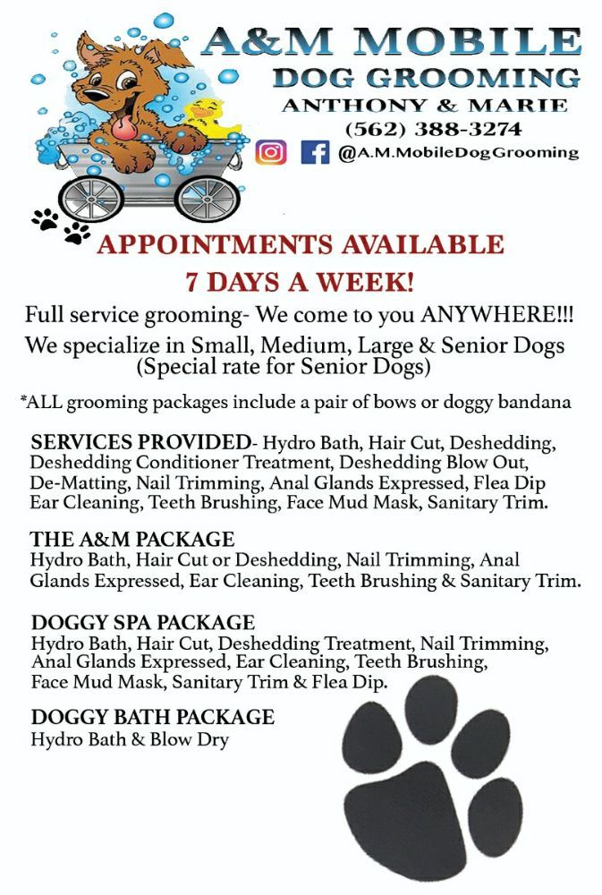 A&M Mobile Dog Grooming
