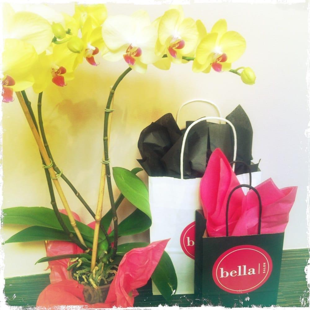 Photos for bella salon yelp for Bella salon austin