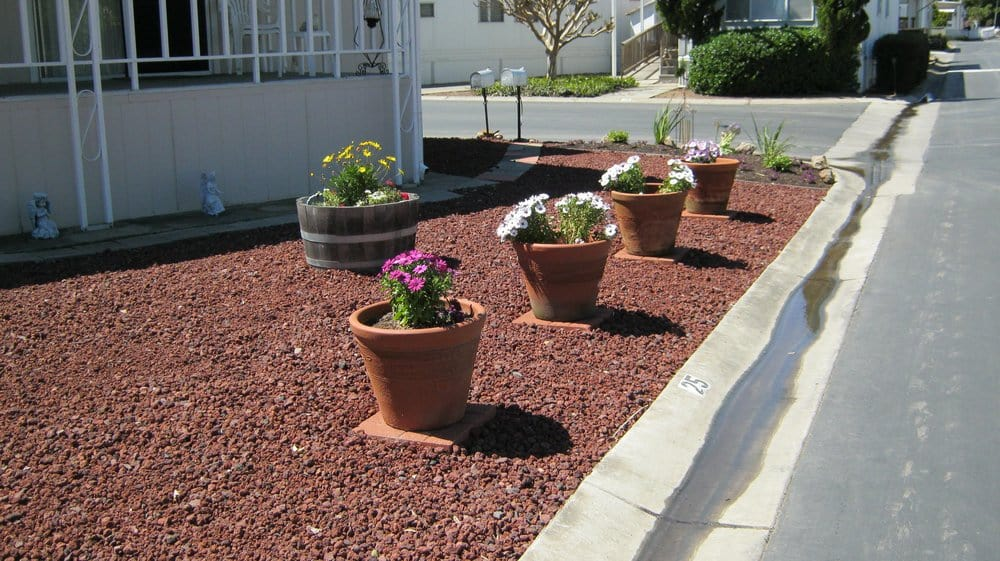 This is simple planters on red lava rock for less of 1000 for Red decorative rocks for landscaping