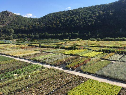 Zahradnictví řež