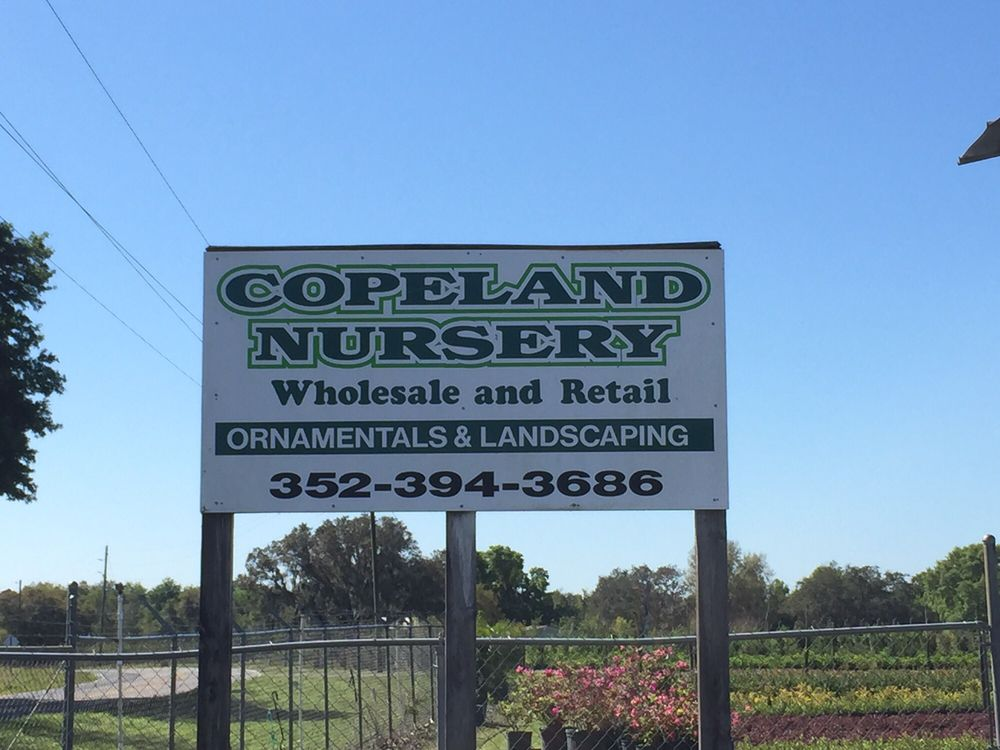 Copeland Nursery: 8335 County Road 561, Clermont, FL