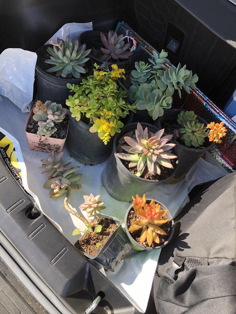 Green Valley Growers Wholesale Nurseries