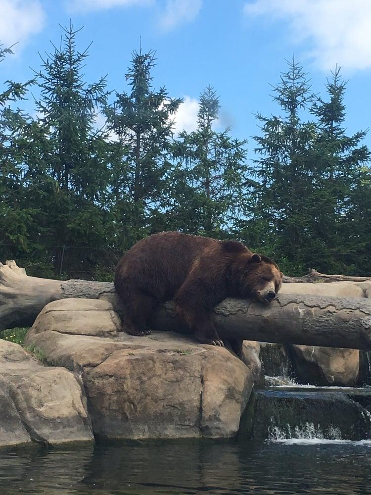 Photos For Columbus Zoo And Aquarium Yelp