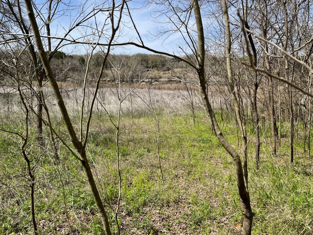Hamilton Greenbelt: 1250 Lohmans Crossing Rd, Lakeway, TX