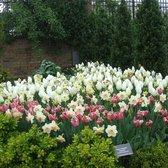 Photo Of Paul J Ciener Botanical Garden   Kernersville, NC, United States