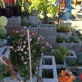 Photo Of Ploughshares Nursery Alameda Ca United States