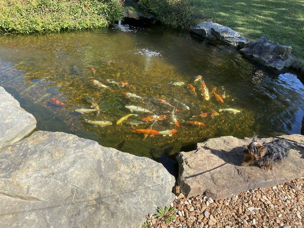 Golden Pond RV Park: 241 Hwy 330 S, Shirley, AR