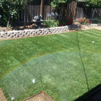 Photo Of Garden Accents   Gilroy, CA, United States. Grass!
