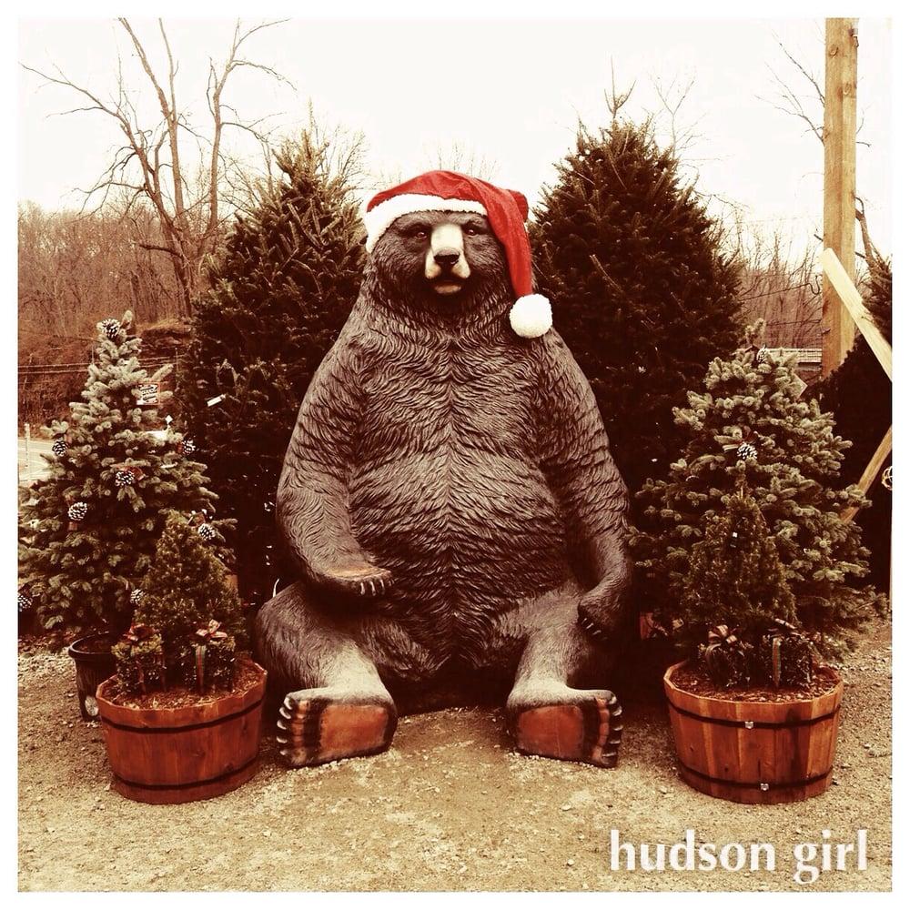 Hilltop Nursery & Garden Center: 2028 Albany Post Rd, Croton-on-Hudson, NY