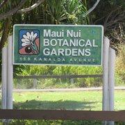 Superbe Breadfruit Photo Of Maui Nui Botanical Gardens   Kahului, HI, United States  ...