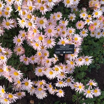 Photo Of Greater Des Moines Botanical Garden   Des Moines, IA, United States