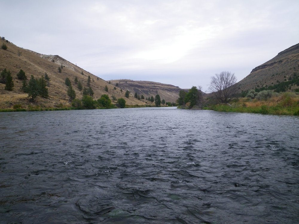 Oregon Fishing Club: 3003 Seven Mile Ln SE, Albany, OR