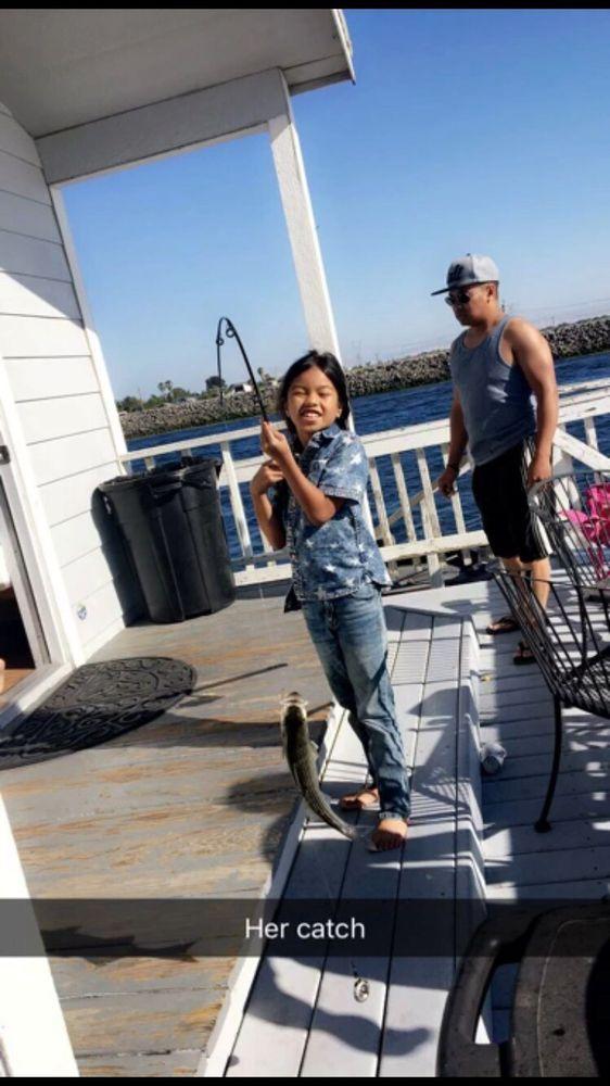 New Life Marina: 1200 Taylor Rd, Bethel Island, CA