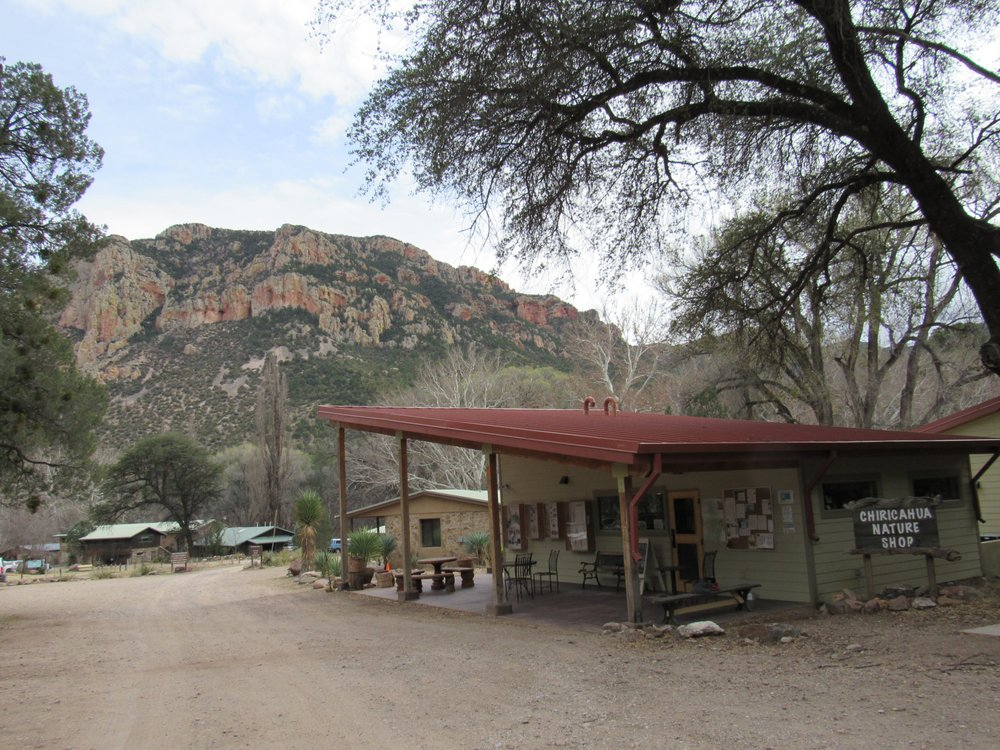 Southwestern Research Station: 2003 W Cave Creek Rd, Portal, AZ