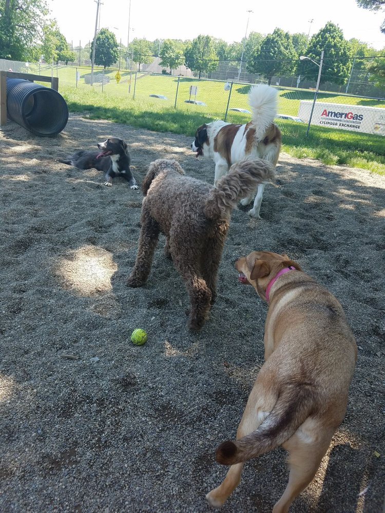 South Euclid Dog Park: 679-699 S Belvoir Blvd, Cleveland Heights, OH