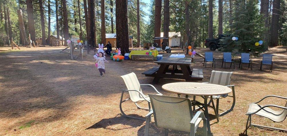 Living Springs RV and Cabins Resort: 7185 Mill Creek Rd, Shingletown, CA