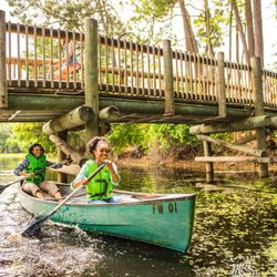 The Cabins at Disney's Fort Wilderness Resort - 2019 All You