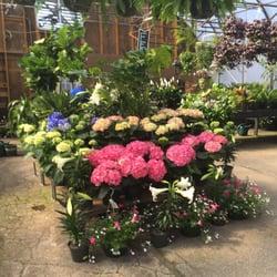Flower Mart by Sunrise of Nashville - Nurseries & Gardening - 4503 Harding Pike, Green Hills, Nashville, TN - Phone Number - Yelp