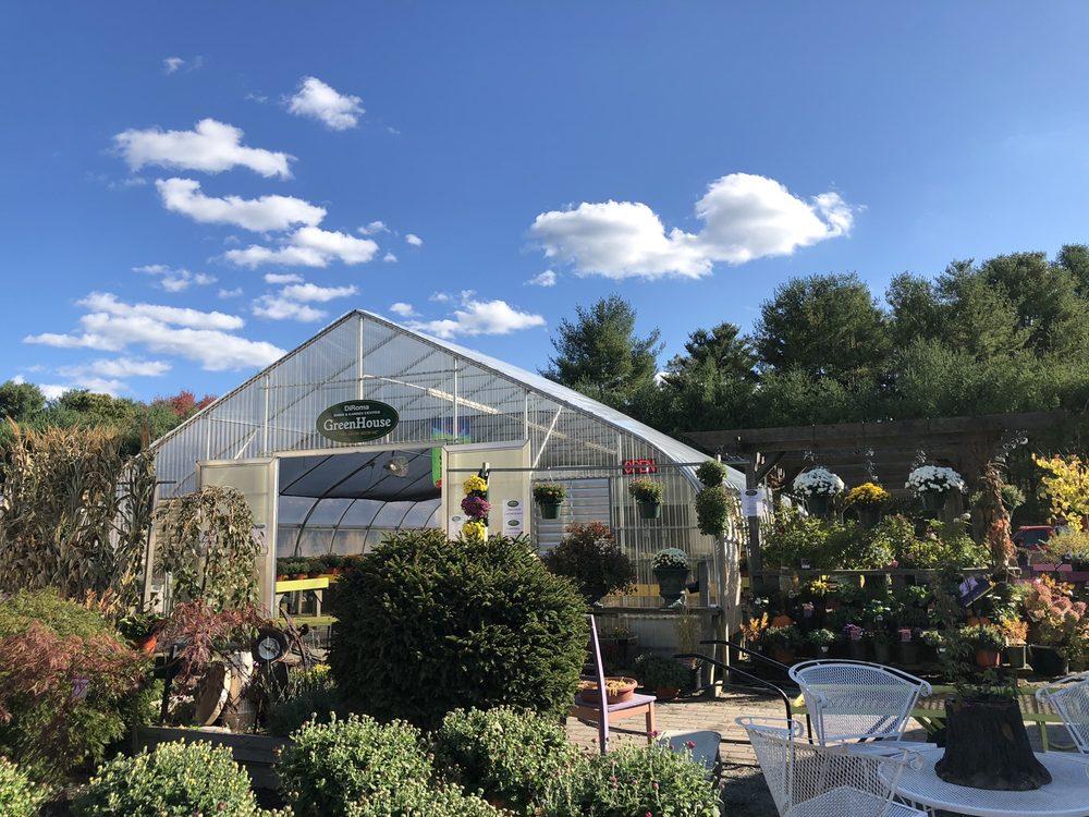 DiRoma Home and Garden Center: 1111 Voluntown Rd, Jewett City,, CT