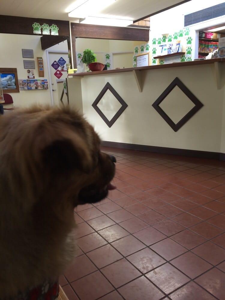 VCA Greenhaven Pocket Animal Hospital   1 Valine Court, Sacramento, CA, 95831   +1 (916) 588-3743