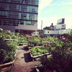 Merveilleux Photo Of Alice Street Community Gardens   San Francisco, CA, United States