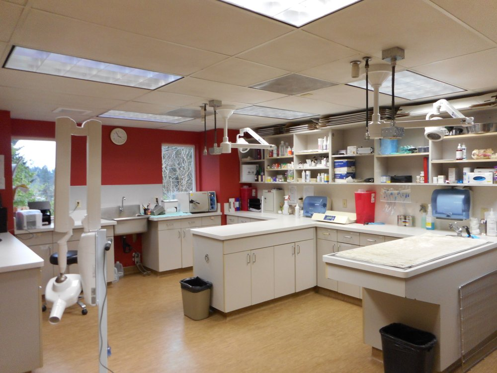 Salmon Creek Veterinary Clinic: 12709 NE Hwy 99, Vancouver, WA