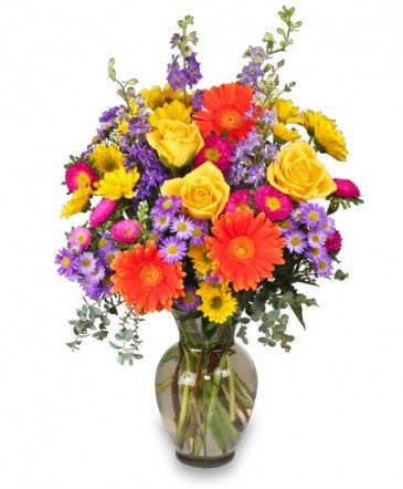 The Hummingbird Florist & Gifts: 851 S Captain Gloster Dr, Gloster, MS