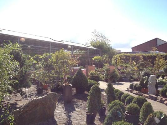 Garten shop  Garten-Shop Hephata - Florists - Dahler Kirchweg 48 ...