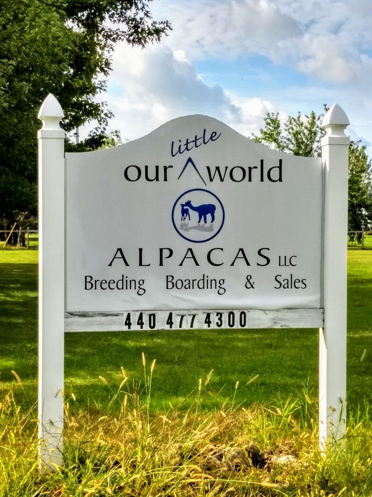 Our Little World Alpacas: 16800 Cowley Rd, Grafton, OH