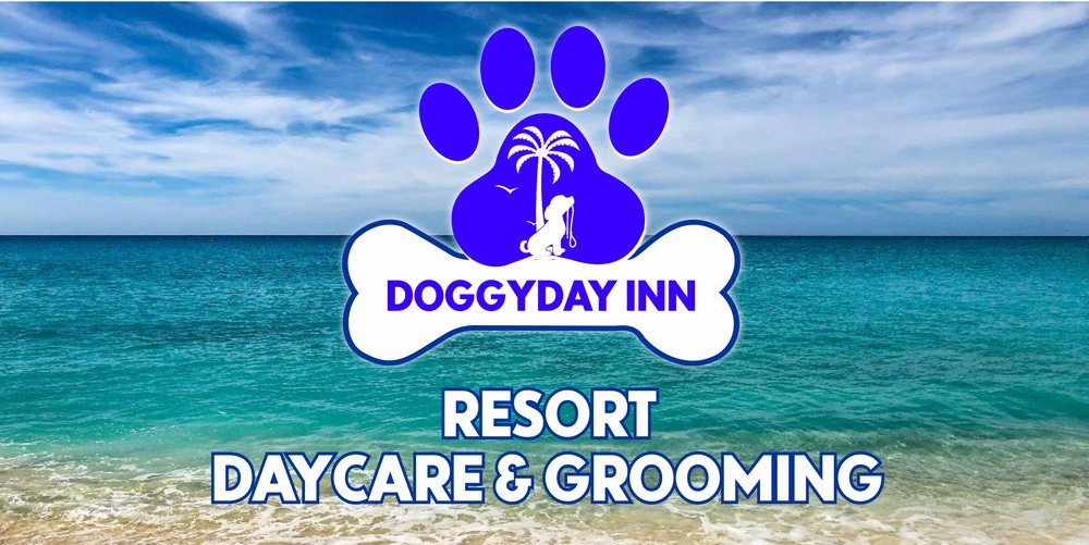DoggyDay Inn Resort, Daycare & Grooming: 3849 Northdale Blvd, Tampa, FL