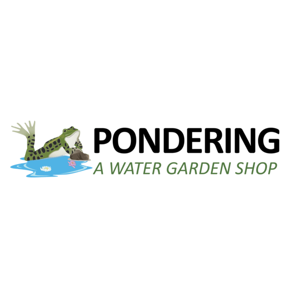 Pondering, A Water Garden Shop: 21 Grant Ave, Etna, PA