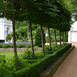 Oxford Garden Design Landscape Gardeners 4 Clare Terrace
