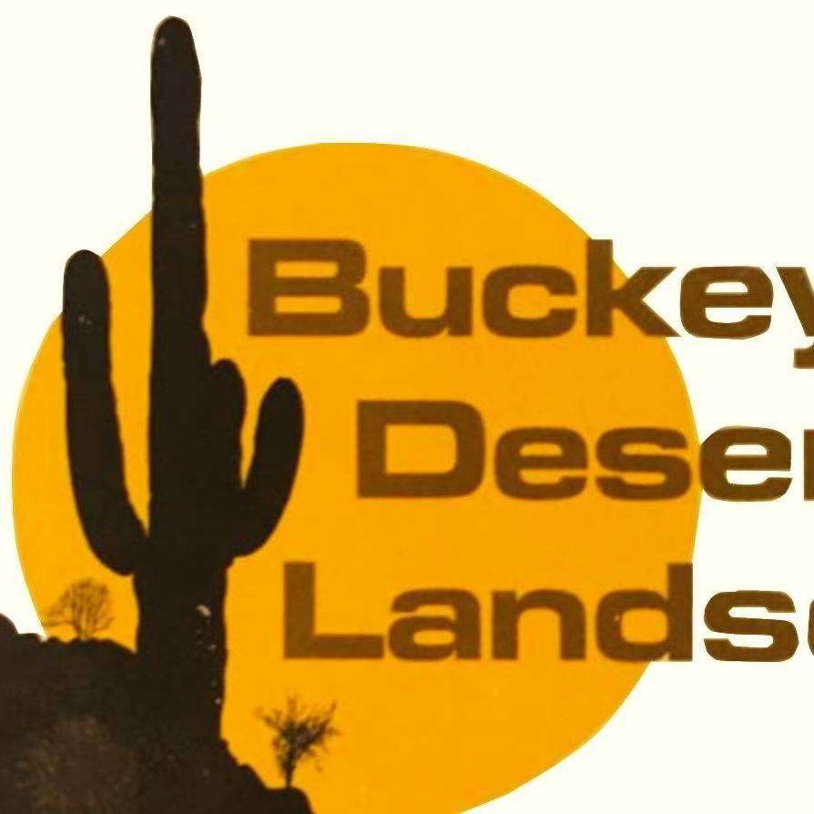 Buckeye Desert Landscape: Arlington, AZ