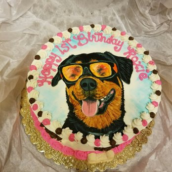 Photo Of My Best Friend Specialty Pet Bakery