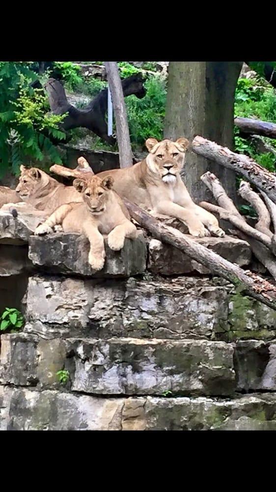Photos for Omaha's Henry Doorly Zoo and Aquarium - Yelp