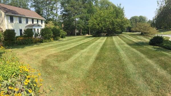 Summer Landscaping endless summer landscaping - landscaping - hamburg, nj - phone