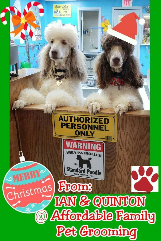 Affordable Family Pet Grooming: 222 N Main St, Fond Du Lac, WI