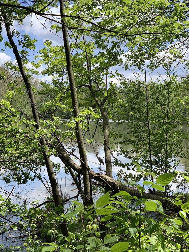 Sharon Woods Park: 11450 Lebanon Rd, Sharonville, OH