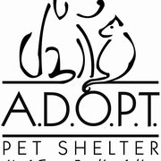 animal shelter coloring pages | Adopt Pet Shelter - 89 Photos & 33 Reviews - Animal ...