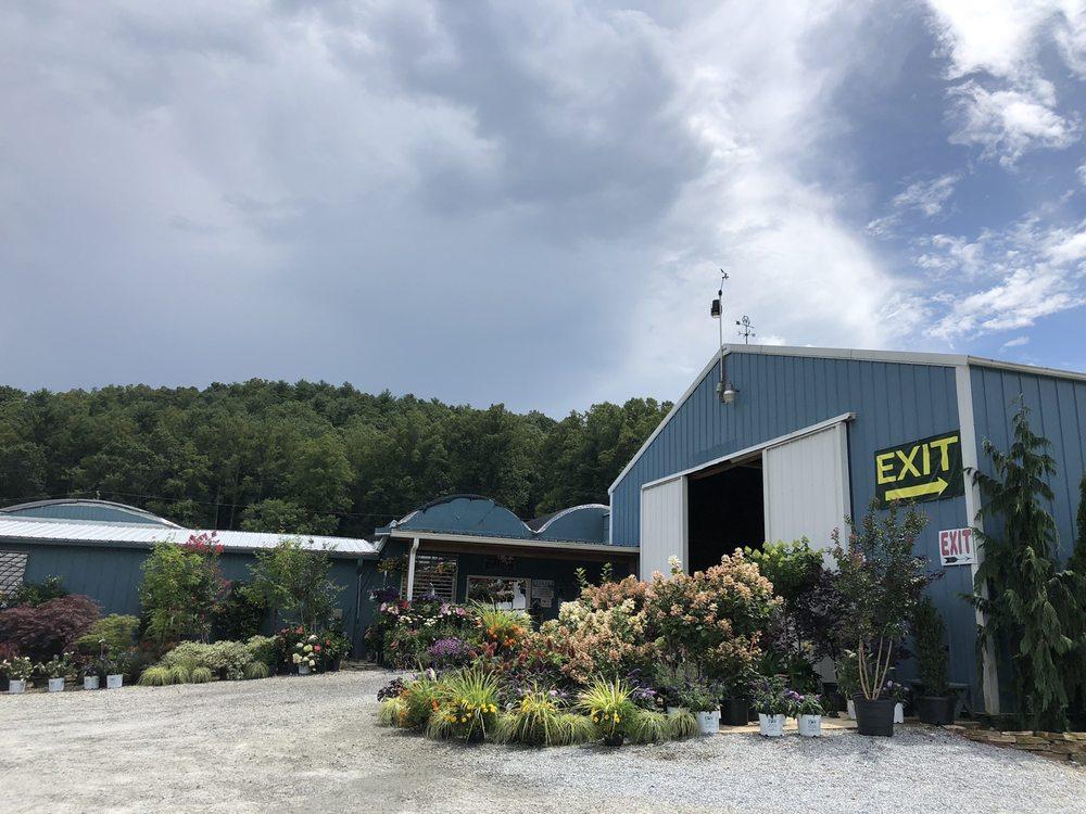 Linda's Plants and Shrubs: 256 Stepp Acres Ln, Hendersonville, NC