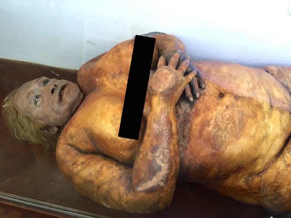 Museo de Anatomía de la Facultad de Ciencias Médicas de Rosario ...