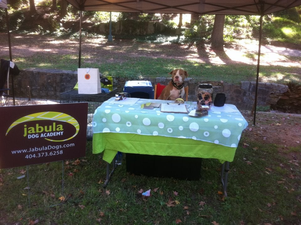 Jabula Dog Training Reviews