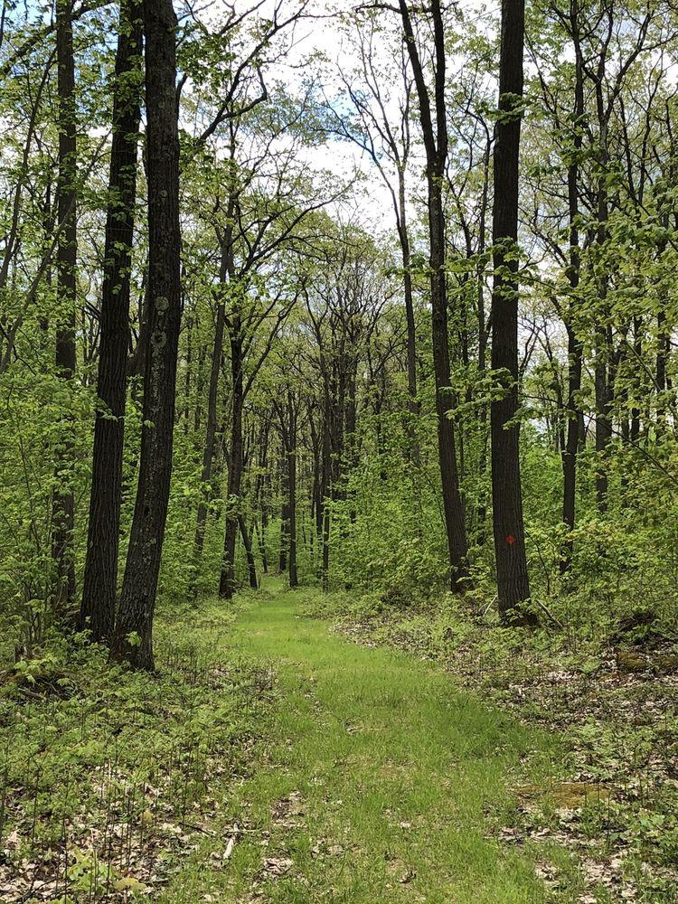 SB Elliott State Park: Penfield, PA