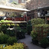 Photo Of Botanica Garden Center   Brooklyn, NY, United States. The Outdoor  Section