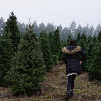 Portland Christmas Tree.Zurbrugg Farms Christmas Trees Christmas Trees 16865 Nw