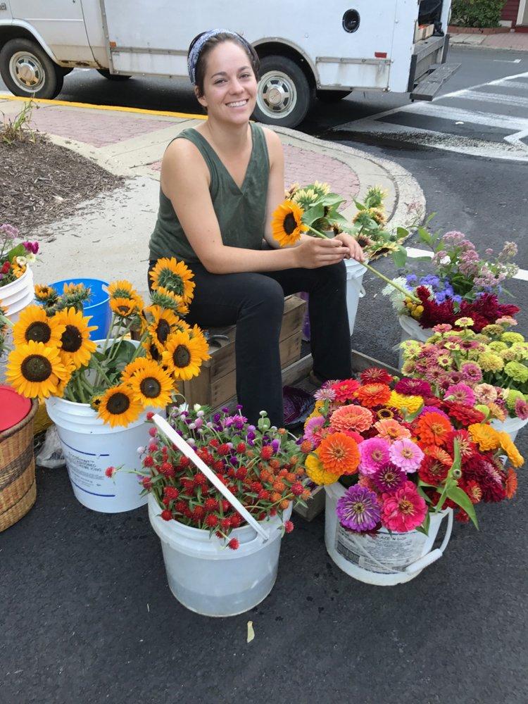 Love Grows CSA: 2350 Bridgetown Pike, Feasterville, PA