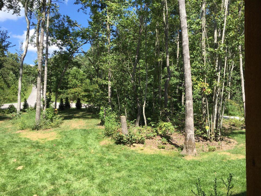 Volunteer Tree & Landscaping: 224 Old Kentucky Stock Rd, Crossville, TN